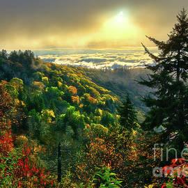 Dan Carmichael - Foggy Fall Sunrise Blue Ridge Parkway
