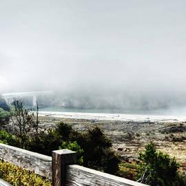 Kandy Hurley - Foggy Mendocino Morning