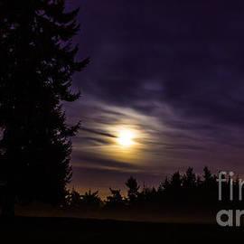 Michael Cross - Foggy Moonlit Night