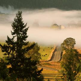 Katie Wing Vigil - Foggy Morning Drive
