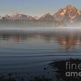 Sandra Bronstein - Foggy Morning in Grand Teton National Park