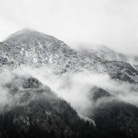 Benjamin Hardman - Foggy Mornings In Austria. Captured
