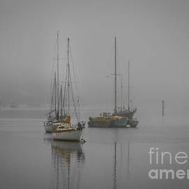 Mitch Shindelbower - Foggy Morro Bay