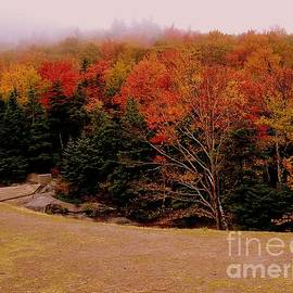 Eunice Miller - Foggy Mountain Landscape