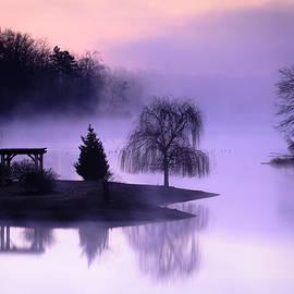 Thomas Pettengill - Foggy Twilight