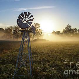 Jennifer White - Foggy Windmill Sunrise