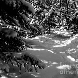 James Aiken - Follow the White Snowy Path