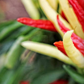 Ella Kaye Dickey - Food Art - Red and Yellow Peppers
