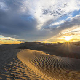 Dustin  LeFevre - Foot Prints in the Sand