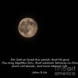 Janice Rae Pariza - For God So Loved The World