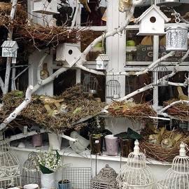 Barbie Corbett-Newmin - For the birds