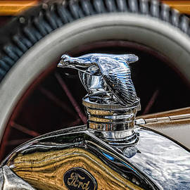 Trey Foerster - Ford Quail Radiator Cap