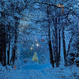 Michele Avanti - Forest Animal Christmas