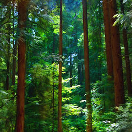 John Robichaud - Forest Heights