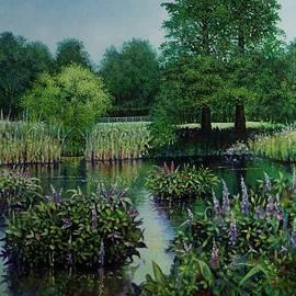 Michael Frank - Forest Park Pond Scene