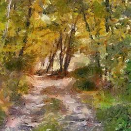 Dragica  Micki Fortuna - Forest Path