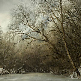Hugo Bussen - Forest pond with ice and snow