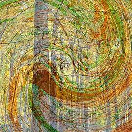 BackHome Images - Forest Spirit