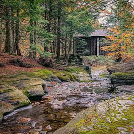 Joan Carroll - Forge Covered Bridge 2
