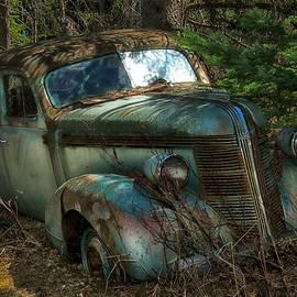 Trever Miller - Forgotten in the Forest