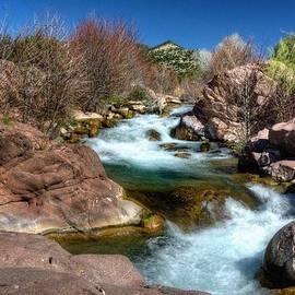 Thomas  Todd - Fossil Creek Roars