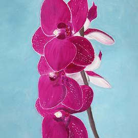 Ruben Carrillo - Four Pink Orchids