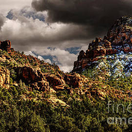 Jon Burch Photography - Four Seasons