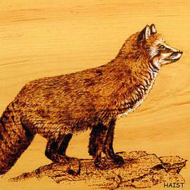 Ron Haist - Fox