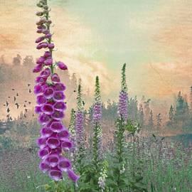 Jeff Burgess - Foxglove in Washington State