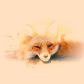 Karol  Livote - Foxy