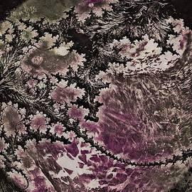 Susan Maxwell Schmidt - Fractal Moon