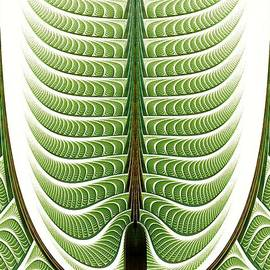 Anastasiya Malakhova - Fractal Pine