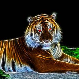 Davandra Cribbie - Fractal Tiger