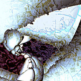 Rebecca Phillips - Fractured Perception Shattered Mind v.2