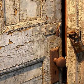 Vadim Levin - Fragile Door