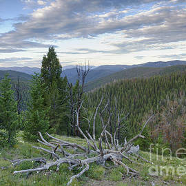 Idaho Scenic Images Linda Lantzy - Frank Church Wilderness