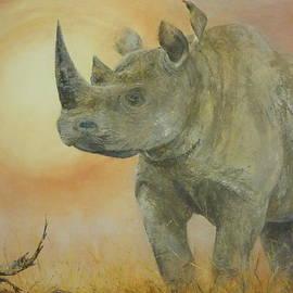 Paula Wiegmink - Freedom of the rhino - show me the way