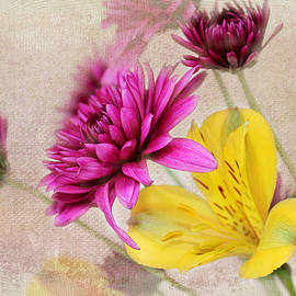 Judy Vincent - Fresh Flowers