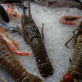 Colette V Hera  Guggenheim  - Fresh Santorini Lobsters