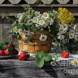 Luv Photography - Fresh Strawberries and Summer Flowers