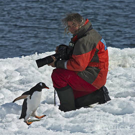 Nina Stavlund - Friend of the Penguins...