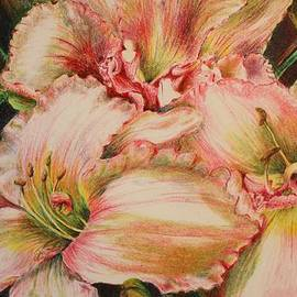 Barbara Ebeling - Frilly Pinks