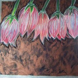 Krista Ouellette - Fritillaria
