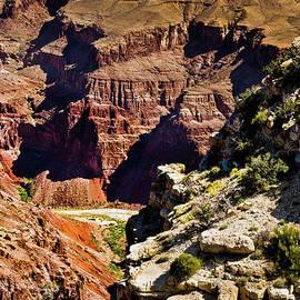 Bob and Nadine Johnston - From Yaki Point 1 Grand Canyon