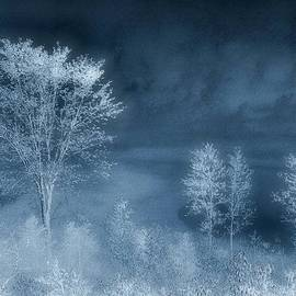 Lorraine Keil - Frosty Blue Morning