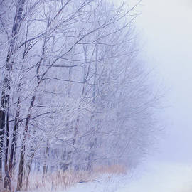 Chris Bordeleau - Frosty Forest Frontier - Artistic
