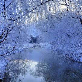 Dan Myers - Frosty Morn