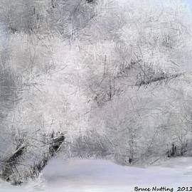 Bruce Nutting - Frosty Winter Day