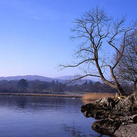 Frosty winter morning the shore of Windermere at Ambleside Cumbria England