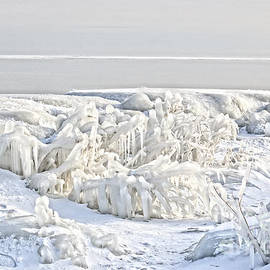 Charline Xia - Frozen Horizon
